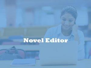 novel editor