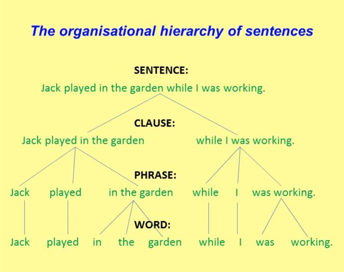 The organazational hierarchy of sentences