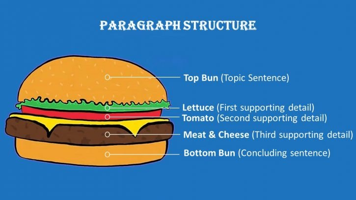 Paragraph structure is similar to a burger