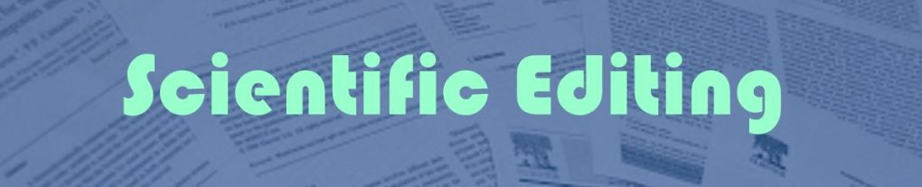 Novel editing services