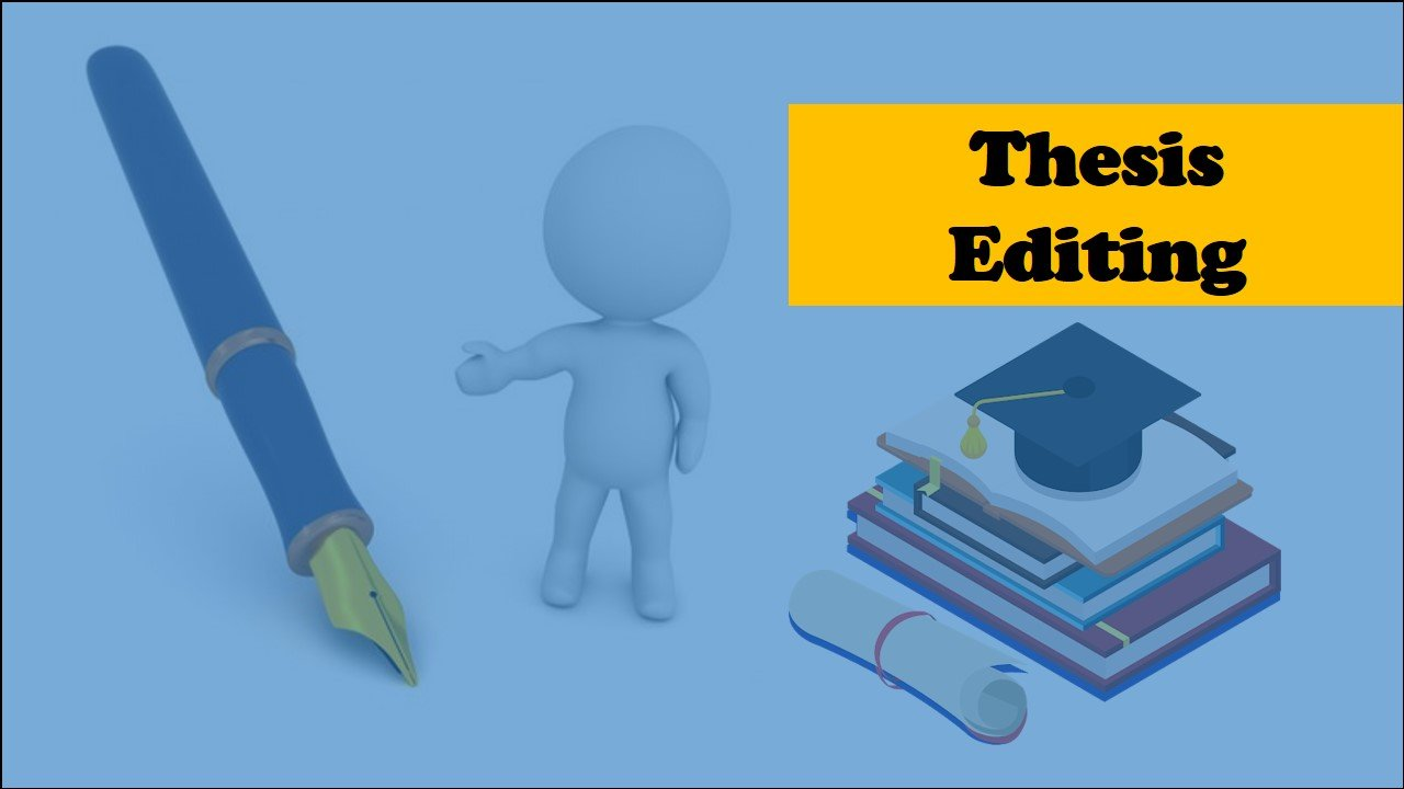 What is a thesis editing service?