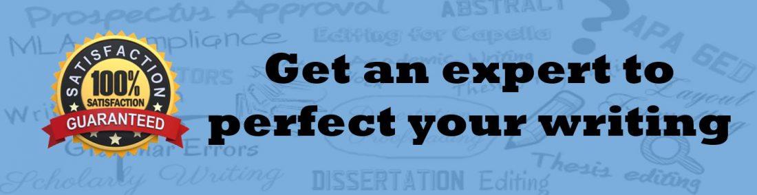 Essay Proofreader