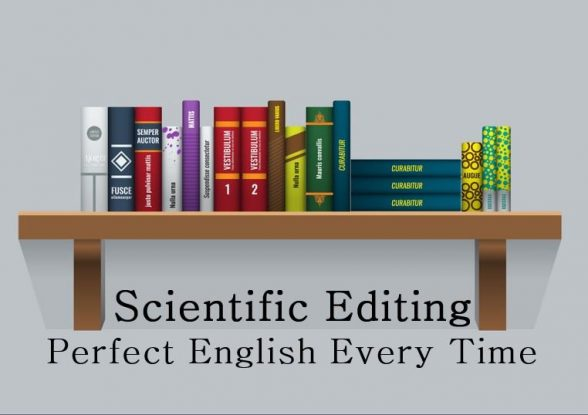 Perfect English Editing Service