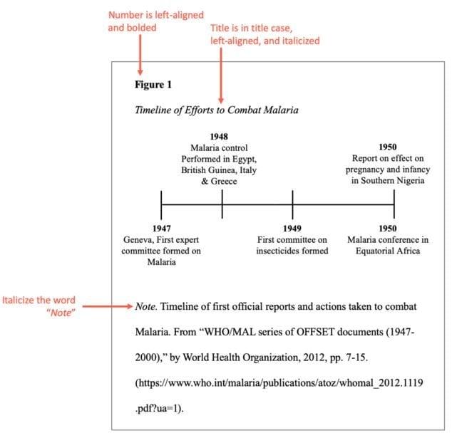 APA format example 3