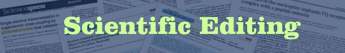 Scientific editing essay correction