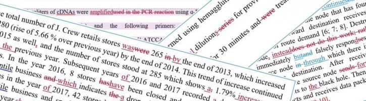 Examples of dissertation proofreading snapshots